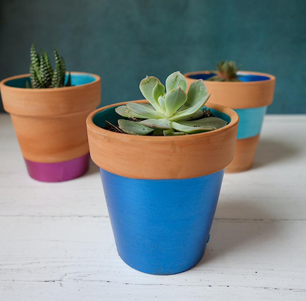 color blocked flower pots