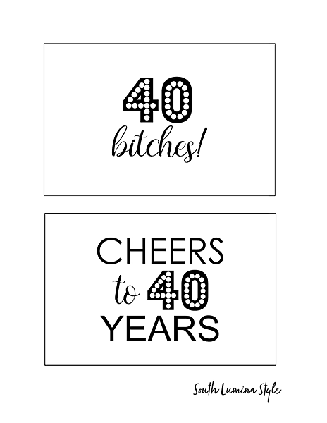 thumbnail of South Lumina Style DIY Printable 40th Birthday Signs cheers to 40 years