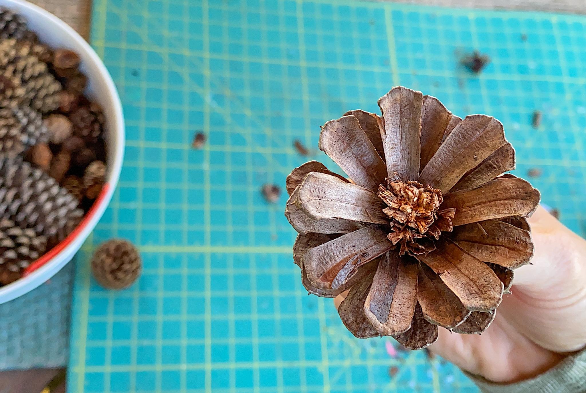 diy pinecone flowers